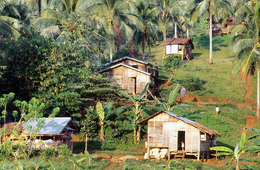 Philippines. Negros Island. Province of Negros Occidental, located in the  Western Visayas region. Barangay (village) Camao. Houses and palm trees. A father and his young boy. © 1999 Didier Ruef