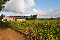 Chateau St Jean d'Aumieres, Gignac village. Terrasses de Larzac. Languedoc. The winery building. France. Europe. Vineyard.