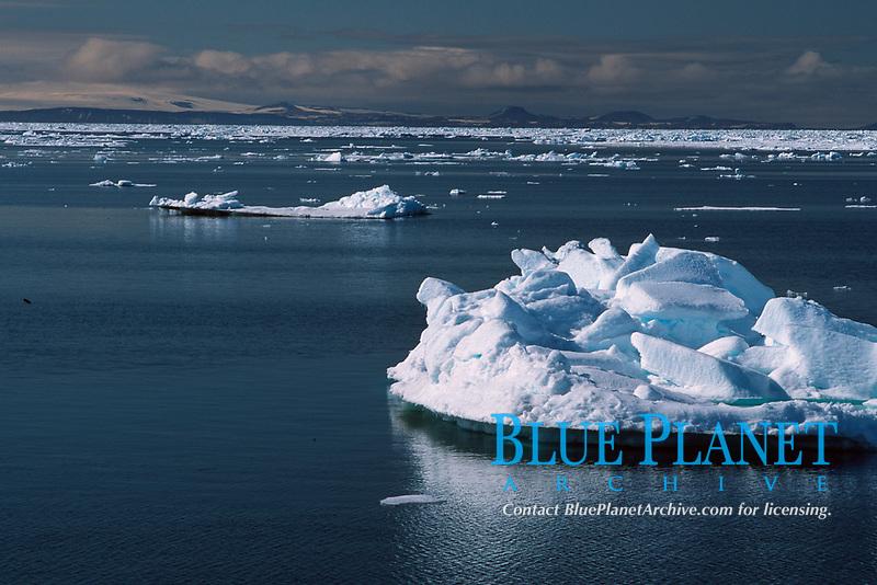 drift ice, pack ice, ice field, Spitsbergen, Svalbard, Norway, Arctic Ocean