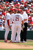 March 20, 2010:  Manager Tony La Russa of the St. Louis Cardinals checks on Jason LaRue after being hit by a pitch during a Spring Training game at the Roger Dean Stadium Complex in Jupiter, FL.  Photo By Mike Janes/Four Seam Images