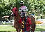 July 24,2020:Hernandez, Benjamin on Tiz the Kitten on Quick Call day at Saratoga Race Course in Saratoga Springs, New York. Rob Simmons/Eclipse Sportswire/CSM