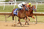 July 12, 2014: Galiana (#3), Abel Lezcano up, wins the Sweet and Sassy Stakes at Delaware Park in Stanton Delaware. Trainer is Rodolfo Romero; owner is WinStar Farm' Joan Fairman Kanes/ESW/CSM