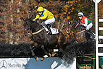 07 November 2009: Country Cousin stays on his feet with Carl Rafter over the last jump to beat Ballet Boy in the Constitution Hurdle at Montpelier Hunt Races in Orange, Va. Country Cousin is owned by Oakwood Stable and trained by Julie Gomena.