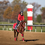 Pingxiang, trained by Hideyuki Mori, exercises in preparation for the Breeders' Cup Sprint at Keeneland 11.03.20.