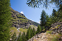 Vallone di Valelle, Gran Paradiso National Park, Aosta Valley, Pennine Alps, Italy. July.