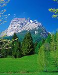 Italy, Veneto, Dolomites, near San Vito di Cadore: Monte Pelmo (3.168 m)