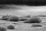 A pasture of frost at Squaw Valley in Tahoe, California.