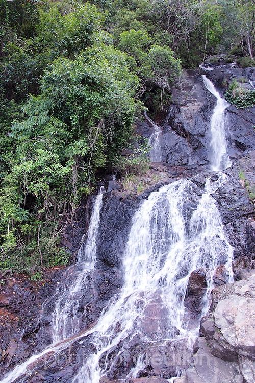 Newell Falls, Waterfall Way, Dorrigo NSW