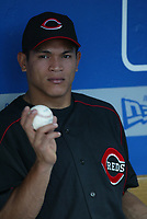 Ray Olmedo of the Cincinnati Reds during a 2003 season MLB game at Dodger Stadium in Los Angeles, California. (Larry Goren/Four Seam Images)