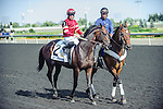 Coltimus Prime(2) with Jockey Jesse M. Campbell aboard at the 155th Queen's Plate at Woodbine Race Course in Toronto, Canada on July 06, 2014.