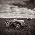 FIELD DAY -- A farm field just outside Reedsburg, Wisconsin, USA. #michaelknapstein #midwestmemoir #blackandwhite #B&W #monochrome #motherfstop #wisconsin  #bwphotography #myfeatureshoot  #fineartphotography #americanmidwest #squaremag #lensculture #mifa #moscowfotoawards #moscowinternationalfotoawards #rps #royalphotographicsociety #CriticalMass #CriticalMassTop200 #photolucida  #portfolioshowcase11 #thegalaawards #thepolluxawards #flakphoto #ipe160 #ipe161 #grainedephotographe  #galleryofwisconsinart