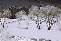 Europe/France/Franche Comté/39 /Jura/Env Les Rousses: Bois d'Amont // France, Jura, arround Les Rousses , Bois d'Amont