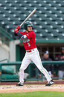 Fort Wayne TinCaps Grant Little (1) at bat during a Midwest League game against the Fort Wayne TinCaps at Parkview Field on April 30, 2019 in Fort Wayne, Indiana. Kane County defeated Fort Wayne 7-4. (Zachary Lucy/Four Seam Images)