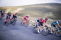 coming down the Port de Balès (HC climb)<br /> <br /> Stage 8 from Cazères to Loudenvielle (141km)<br /> <br /> 107th Tour de France 2020 (2.UWT)<br /> (the 'postponed edition' held in september)<br /> <br /> ©kramon