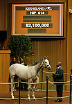 September 16, 2015: Hip 614 Tapit - Silver Colors colt consigned by Gainesway and purchased by Whisper Hill Farm (Mandy Pope).   Candice Chavez/ESW/CSM