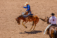 USA , Wyoming, Cheyenne Spencer Wright, Milford,UT,  rides the Almost Heaven horse at saddle bronc section  at 2017 Cheyenne Frontyer days