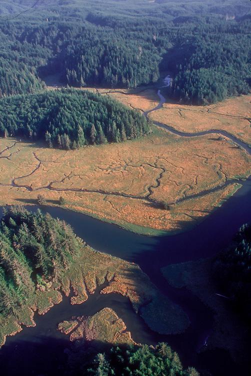 Elk River, aerial, Grays harbor, Southwest Washington timberlands,  Washington State, USA, Nature Conservancy, nature preserve,
