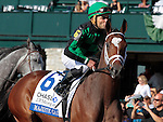 """LEXINGTON, KY - OCTOBER 12: #6 Majestic Gale and jockey Joel Rosario in the 26th running of the JPMorgan Chase Jessamine (Grade 3) $150,000 """"Win and You're In Juvenile Fillies Turf Division"""" at Keeneland Race Course.  October 12, 2016, Lexington, Kentucky. (Photo by Candice Chavez/Eclipse Sportswire/Getty Images)"""