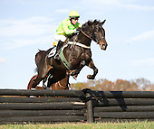 Justpourit and Gus Brown fly high in the Foxhunter's Chase at Unionville.