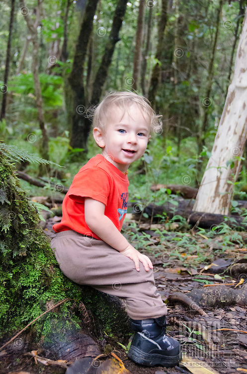 A one-year-old part-Asian boy enjoys the forest in Kalopa State Park, Hamakua Coast, Big Island.