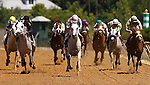 May 19, 2012 T M Fred Texas (#10, center) Abel Castellano, Jr. up, wins the President of United Arab Emirates Cup Series (Gr. I) for Arabian horses at Pimlico Race Course in Baltimore, Maryland. photo by Joan Fairman Kanes
