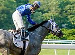 June 5, 2021: Jockey Luis Saez celebrates after winning the Belmont Stakes aboard Essential Quality on Belmont Stakes Day at Belmont Park in Elmont, New York. Scott Serio/Eclipse Sportswire/CSM