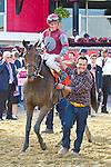 Javier Castellano celebrates winning the 2013 GIII Pimlico Special at Pimlico Racecourse in Baltimore Maryland.