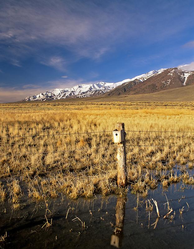 Birdhouse on shore of Mann Lake with Steens Mountain. Oregon.