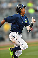 Third baseman Milton Ramos (24) of the Columbia Fireflies bats in a game against the Lexington Legends on Friday, April 21, 2017, at Spirit Communications Park in Columbia, South Carolina. Columbia won, 5-0. (Tom Priddy/Four Seam Images)