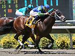 08 August 2009: Joyful Success (2yo by Successful Appeal) breaks his maiden under jockey Tyler Baze at Del Mar Race Track, Del Mar, CA