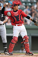 Catcher Isaias Lucena (19) of the Greenville Drive in a game against the Kannapolis Intimidators on Friday, July 14, 2017, at Fluor Field at the West End in Greenville, South Carolina. Greenville won, 2-0. (Tom Priddy/Four Seam Images)