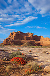 Arches National Park, UT <br /> Morning sun illuminates clearing clouds and the towers of Park Avenue with red paintbrush (Castilleja chromosa) blooming on the slickrock.