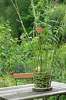Mädchen flechtet, flicht aus Weidenzweigen einen Korb im Garten, Weide, Weiden, Basteln, Bastelei, Weidenkorb