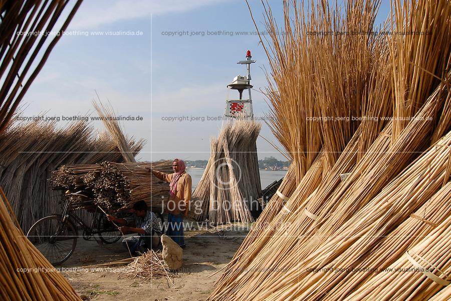 BANGLADESH, sticks from the Jute plant after processing / BANGLADESCH, Stoecker der Jutepflanze nach der Gewinnung der Faser aus der Rinde