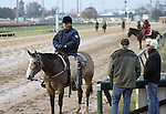 Trainer D. Wayne Lukas and trainer Bob Baffert converse while their horses exercise at Churchill Downs on  November 4, 2011.