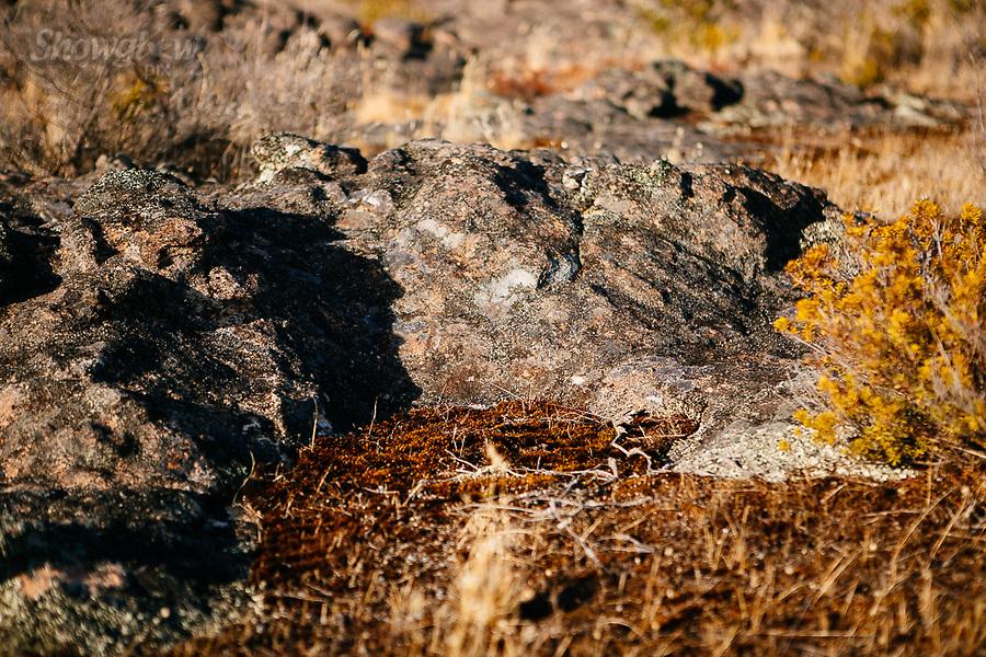 Image Ref: CA745<br /> Location: Mt Stapylton, The Grampians<br /> Date of Shot: 27.01.19