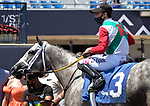 MARCH 27, 2021: #3 SWEET BYE AND BYE and Jockey Irad Ortiz take the $100,000 Sand Springs Stakes for Trainer Saffie Joseph Jr on Florida Derby Day at Gulfstream in Hallandale Beach, Florida on March 27, 2021. Carson Dennis/Eclipse Sportswire/CSM