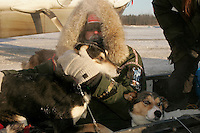 Wednesday March 7, 2007    a t the Nikolai checkpoint on Wednesday in 35 below temperatures, veterinarian George Stroberg holds dogs in a sled as they head toward the airstrip to be flown back to Anchorage.
