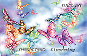 Marie, REALISTIC ANIMALS, REALISTISCHE TIERE, ANIMALES REALISTICOS, paintings+++++JourneyInTheMist,USJO47,#A# ,Joan Marie , butterfly