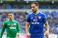 Greg Cunningham of Cardiff City in action during the Premier League match between Cardiff City and Brighton & Hove Albion at the Cardiff City Stadium, Cardiff, Wales, UK. Saturday 10 November 2018