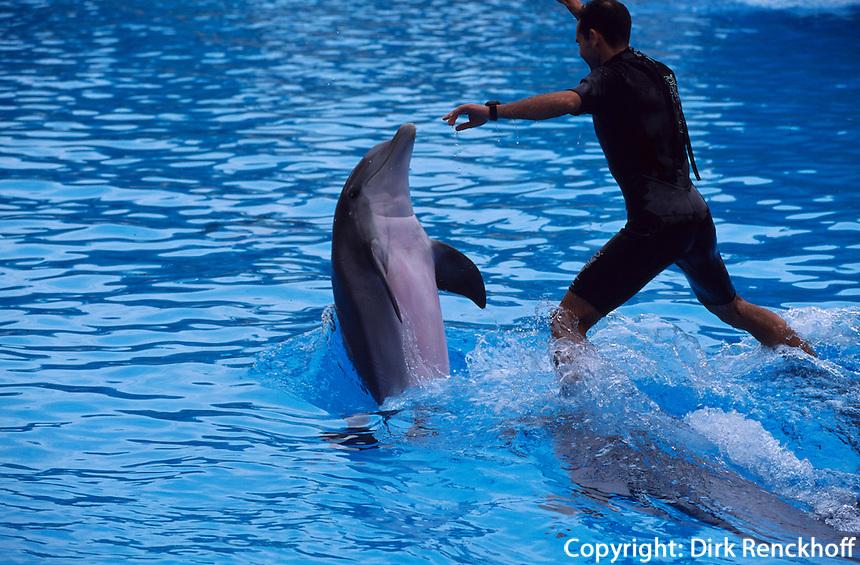 Spanien, Kanarische Inseln, Teneriffa, Delphinshow im Loro-Park  in Puerto de la Cruz
