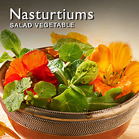 Nasturtiums | Nasturtium Food Pictures, Photos & Images