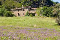Biodiversità, Alberto Olivucci presidente di Civiltà Contadina e responsabile di Seed Savers (banca di semi), nella sua cascina a San Leo in Emilia Romagna.