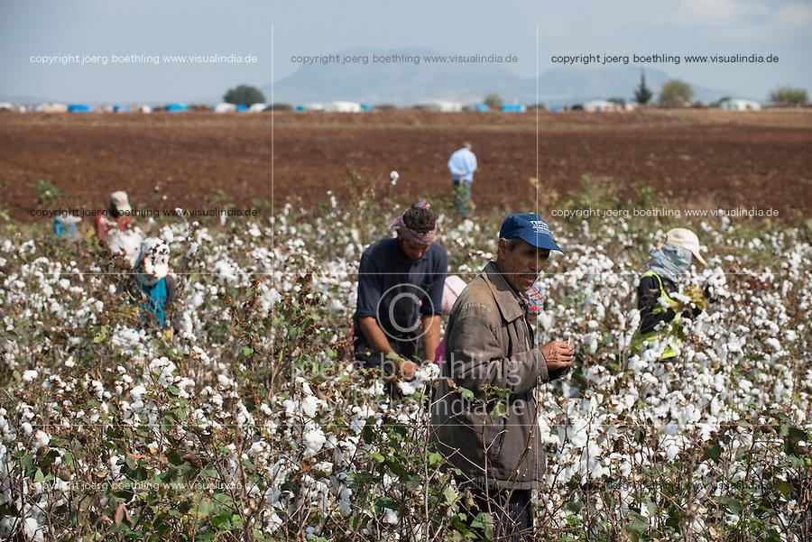 TURKEY, Asmali, near Adana, syrian refugees from Kobane harvest cotton by hand for low wages for a turkish farmer, they have fled from Kobani four weeks ago and camp on the farm in tents seen in the background / TUERKEI, Asmali, bei Adana, syrische Fluechtlinge aus Kobane ernten Baumwolle per Hand fuer geringen Lohn fuer einen tuerkischen Farmer, sie sind aus Kobane vor 4 Wochen gefluechtet und leben auf der Farm in Zelten aus Planen, im Hintergrund zu sehen