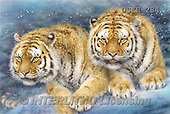 Kayomi, REALISTIC ANIMALS, REALISTISCHE TIERE, ANIMALES REALISTICOS, cute animals, lustige Tiere, animalitos diver, paintings+++++,USKH284,#A#