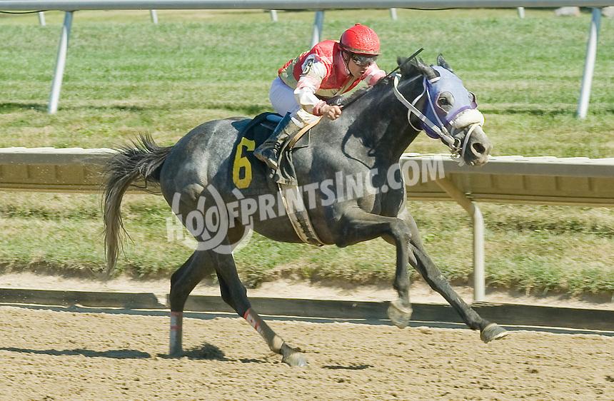 Skagerrak winning at Delaware Park on 9/15/10