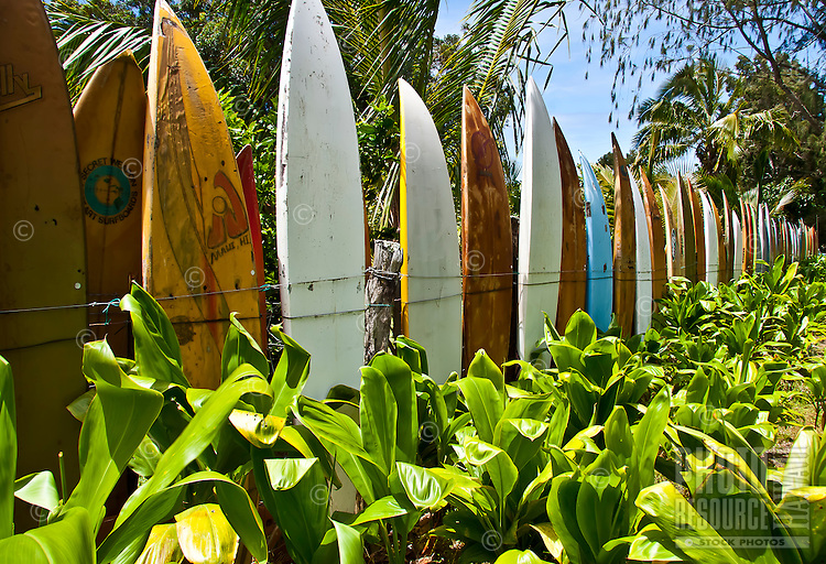 """This well-known surfboard fence borders Ka'ohu Farms, which is owned by a local surfer in Pe'ahi, Maui. This location was the final leg in the television show """"The Amazing Race."""""""