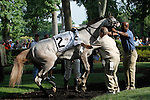 July 14, 2012 Wicked Mizz, one of two Anthony Dutrow-trained fillies entered in the Delaware Oaks, gives her handlers a hard time in the paddock. She led for much of the race before fading to last behind winner and stablemate Grace Hall. Delaware Oaks at Delaware Park in Stanton, Delaware.   ©Joan Fairman Kanes/Eclipsesportswire