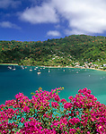 Trinidad & Tobago, Commonwealth, Tobago, Charlotteville: fishing village at Man of War Bay