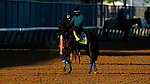 April 26, 2021: Medina Spirit gallops in preparation for the Kentucky Derby at Churchill Downs in Louisville, Kentucky on April 26, 2021. EversEclipse Sportswire/CSM